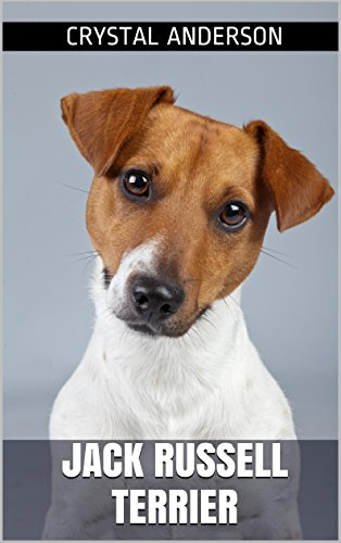 Jack Russell Terrier: How to Own, Train and Care for for sale  Delivered anywhere in USA