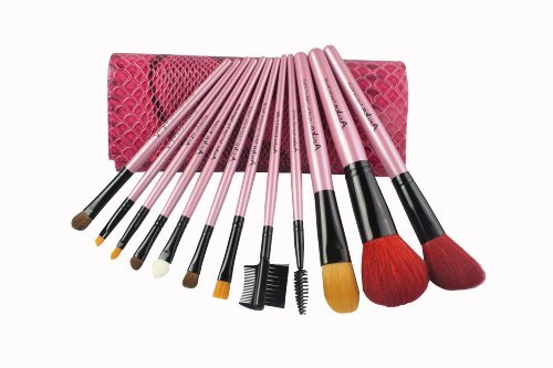 Makeup Brushes for Professional-Home kit-12 pieces-Good affordable W/pouch-Best eye shadows...