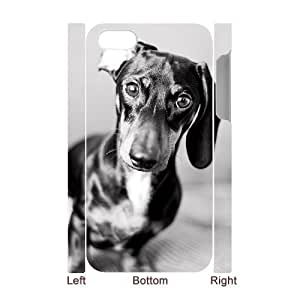 Customized Durable Case for Iphone 4,4S 3D, Cute Dog Dachshund Phone Case - HL-694302