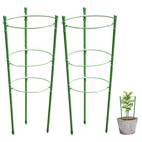 Garich Plant Support Garden Support Rings Trellis Supporter Climbing Plants Flowers by Garich