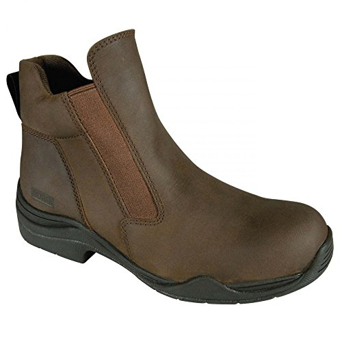 Suffolk d'Equitation Mixte Cheeko Chaussures Adulte Toggi Marron d1wxEqSAt