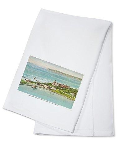 Coronado Beach, California - Aerial View of Hotel del Coronado (100% Cotton Kitchen Towel)