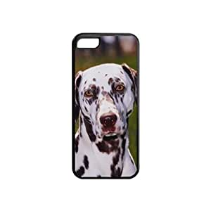 Custom DALMATION DOG COVER FOR IPHONE 5C