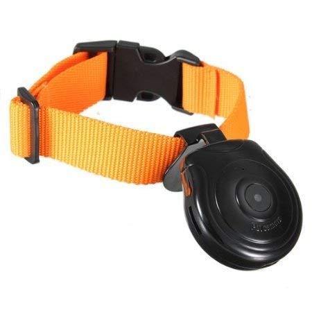 Digital Pet Collar Cam Camera DVR Video Recorder Monitor For Dog Cat Puppy Black by Puhui Digital