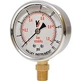 Valley Instrument Grade A Stem Mount 2 1/2in. Glycerin Filled Gauge - 0-15 PSI