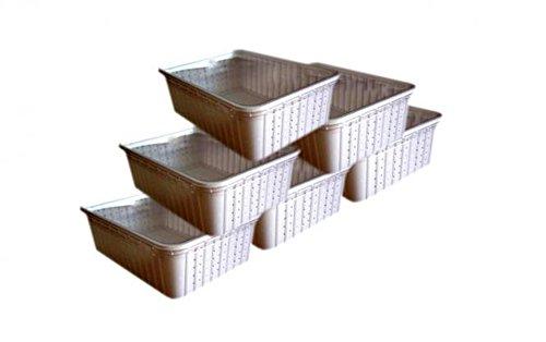 100 weiße Rechteckdosen, Transportboxen, Börsendosen, mit tranparenten Deckel, 2 Seiten perforiert (gelocht)