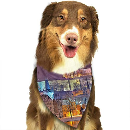 FRTSFLEE Dog Bandana Prague Scarves Accessories Decoration for