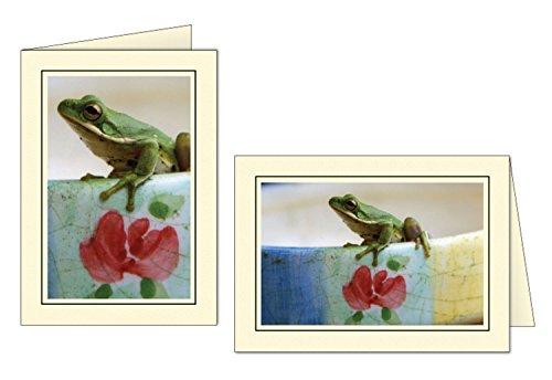 - Photographer's Edge, Photo Insert Card, Cream with Black Border, Set of 10 for 4x6 Photos