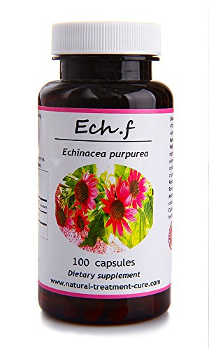 - Hekma Center Pure Echinacea Purpurea Flowers and Leaves - 100 Veggie Capsules Good for The Immune System