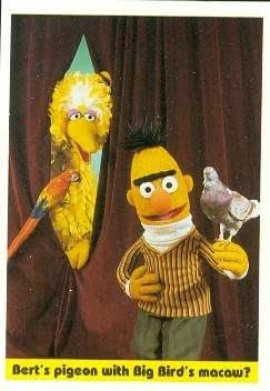 Bert With Pigeon Trading Card Sesame Street 1992