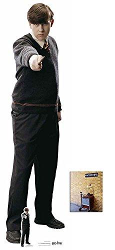 Fan Pack - Neville Longbottom Harry Potter Lifesize and Mini Cardboard Cutout / Standup - Includes 8x10 Star Photo