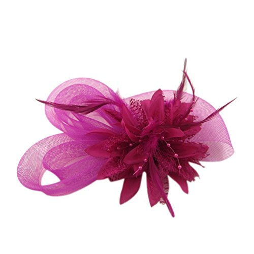 [Women's Fascinators Hat Small Hairpin Feather Mesh Flower Hairclip ( Rose Red)] (Ganster Hat)
