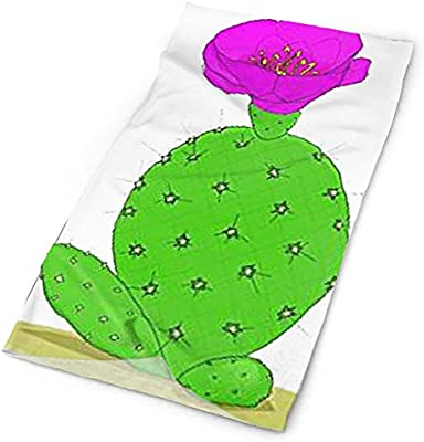 HACVREQ - Diadema Personalizada de Cactus para Disfraces, Trajes ...