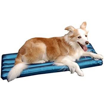 Amazon.com : DOGS waterbed (S) care, pressure sore