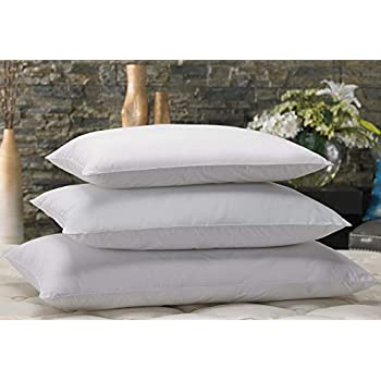 Amazon Com Marriott Down Alternative Eco Pillow