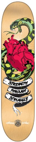 skateboard zoo york - 4