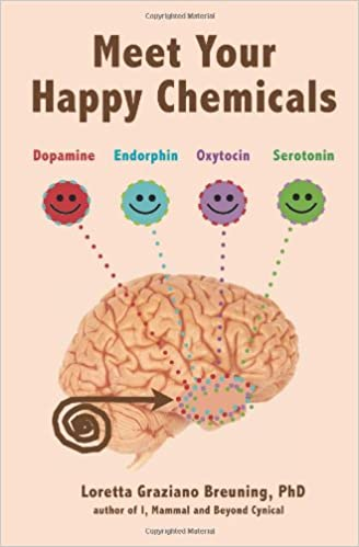 Meet Your Happy Chemicals Book