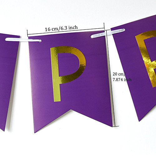 Happy Birthday Party Decoration Kit Purple Happy Birthday Banner With Purple Tissue Paper Pom Poms Paper Flowers by Wcaro (Image #5)