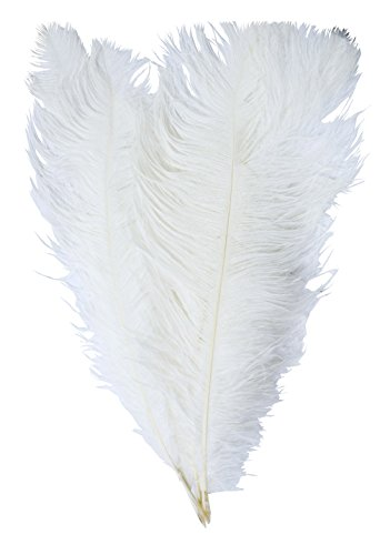 Mandala Crafts® 17 to 19 Inches Dyed Plumes Wholesale Ostrich Feathers, 5 PCs (White) - Ostrich Feathers Hats Crafts