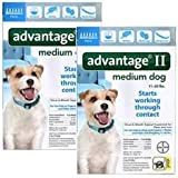 Advantage II For Medium Dogs 11-20 lbs, 12 Pack