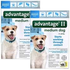 Advantage II For Medium Dogs 11-20 lbs, 12 Pack by BAYER Advantage II