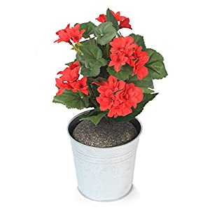 Closer to Nature Artificial 24cm Begonia Plug Plant - Artificial Bedding Plug Plant and Display Range 32