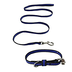 Pawzone Nylon Leash With Collar Set For Puppy – Blue