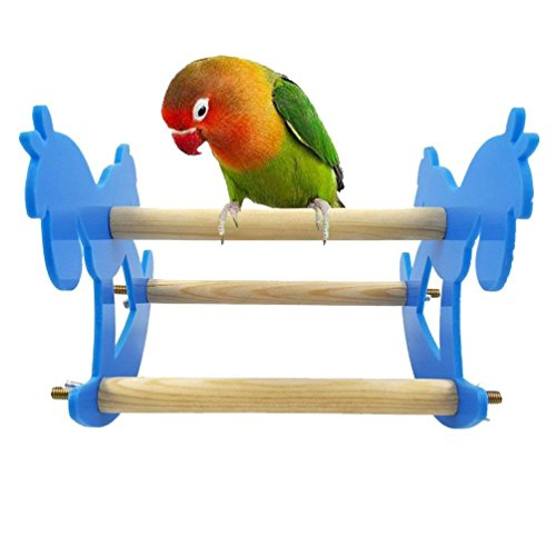 ShanTu Pet Bird Parrot Hamsters Holder Squirrels Climbing Swing stand Rocking chair seesaw Chewing toys