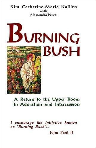 Book Burning Bush by Kim Catherine-Marie Kollins (2006-07-15)
