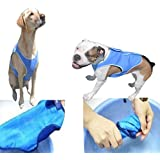 Dog Cooling Vest Keeps Your Dog Cool All Summer. Size XL. BONUS GIFT *Stainless Steel, Tick Remover* Included. Lightweight Vest Gives Your Dog Free Range Of Motion When Moist. Easy To Use, Refresh and Store.