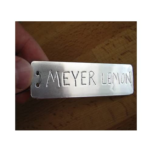 (Ship from USA) 100 Metal Tree Tags - Plant Labels - ID Markers - Aluminum Plant Identification /ITEM NO#8Y-IFW81854203854