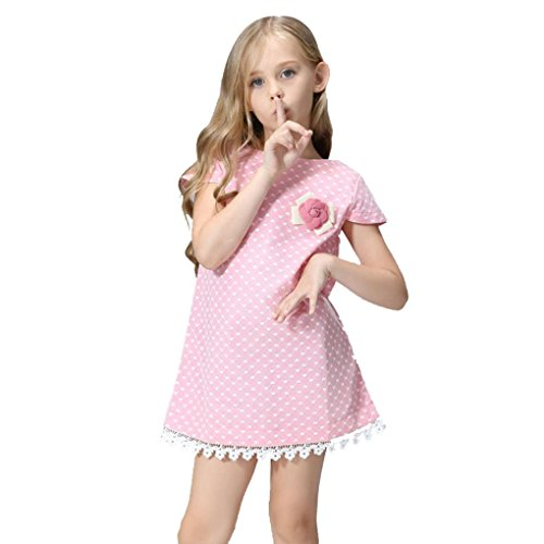 Girl Drees,Fheaven Lace Princess DressFlower Brooch Evening Party Dresses (4T, Pink) (Rosette Bubble Dress)