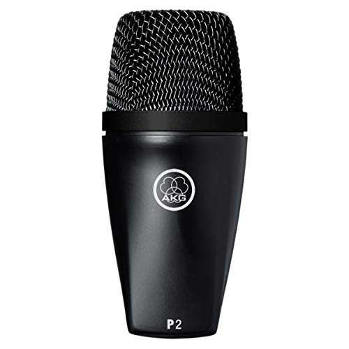 AKG P2 High-Performance Dynamic Bass -
