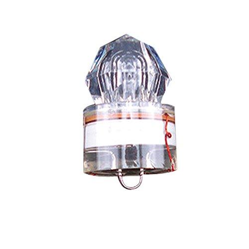 Led Swordfish Light in US - 7