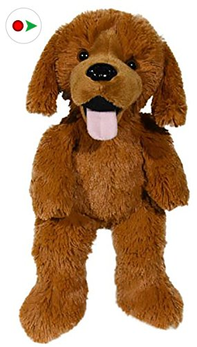 Stuffems Toy Shop Record Your Own Plush 16 inch Daisy The Golden Retriever - Ready to Love in A Few Easy Steps