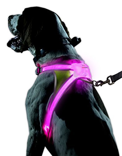 noxgear LightHound – Revolutionary Illuminated and Reflective Harness for Dogs Including Multicolored LED Fiber Optics…