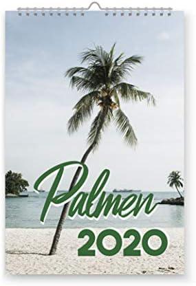 42thinx Palmen - Foto Jahreskalender Wandkalender Din A4 für 2020 I Bilder Kalender zum Aufhängen mit Spiralbindung I Wandkalender Design Urlaubsfeeling to Go - V1 Januar bis Dezember
