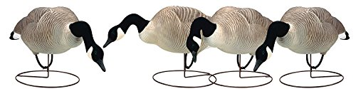 - Final Approach FA Last Pass HD Field Honker Decoy Feeder Pack, 4 Pack
