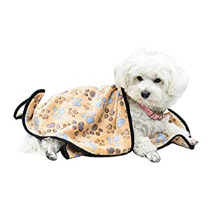 EXPAWLORER Pet Blanket for Small Cats & Dogs Thick S 7652cm Brown