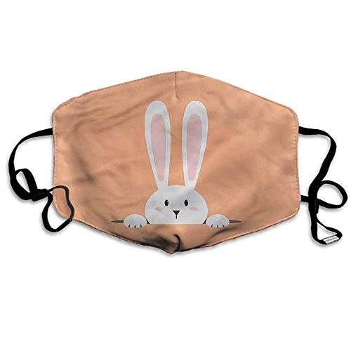 Rabbit Dust Mouth Mask Easter Bunny in Hole Cartoon for Men and Women W4