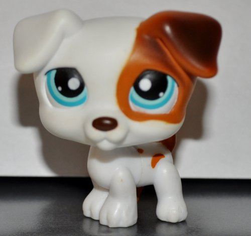 Jack Russell #151 (Dog, White, Brown Accents) Littlest Pet Shop 2005 (Retired) Collector Toy - LPS Collectible Replacement Single Figure Loose (OOP Out of -