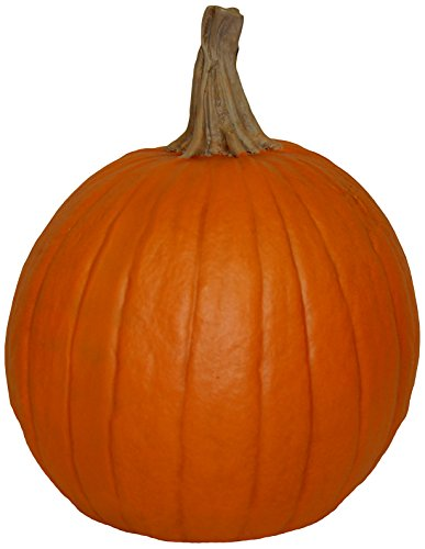 Hickory Manor House Medium Fall Harvest Pumpkin for Home (Resin Pumpkins)