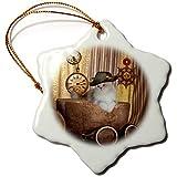 3dRose Heike Köhnen Design Steampunk - Cute cat on wonderful steampunk hat - 3 inch Snowflake Porcelain Ornament (orn_287293_1)