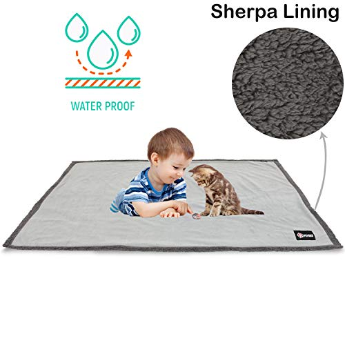 Waterproof Dog Blanket,Premium Pet Puppy Cat Soft Fleece Sherpa Throws Blanket Cushion Mat for Car Seat Furniture Protector Cover Small 50″ x 30″ by Pawsse Gray For Sale