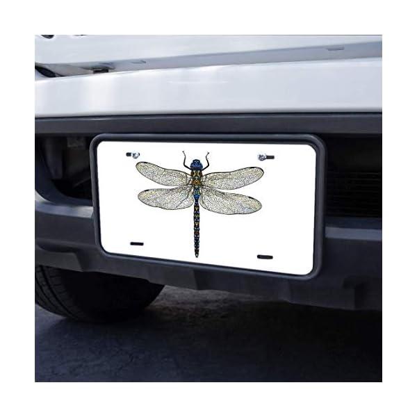 License-Plate-Frame