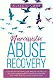 Narcissistic Abuse Recovery: A Self Healing