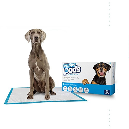 (Mednet Direct 13036Dp-50 Puppy Pads & Dog Training Pads, 30 X 36-50Count)