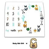 Baby Monthly Milestone Blanket Photo Blanket Photography Props Backdrop for Newborn Boys Girls 40'' x 40'' by CORLISS (Fox)