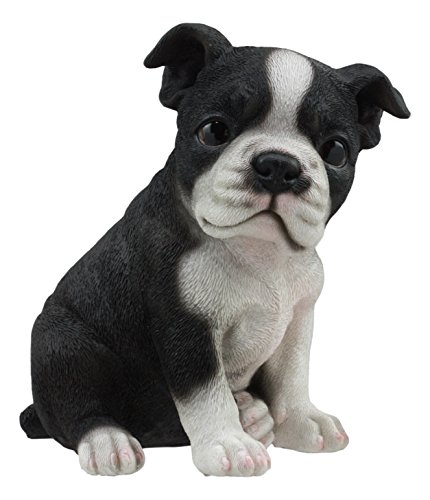 Ebros Realistic Miniature Boston Terrier Puppy Statue 6.25