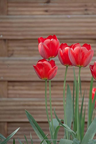 Red Tulips in the Garden Journal: 150 Page Lined Notebook/Diary PDF